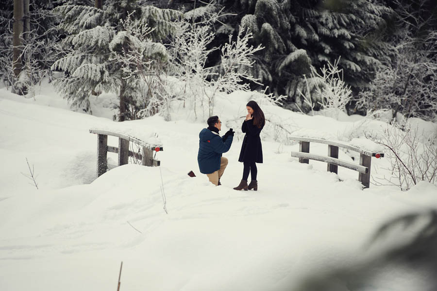 Whistler secret engagement proposal